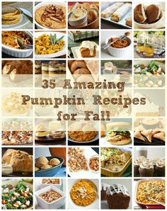 35 Pumpkin Recipes - amazing pictures & recipes!