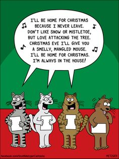 Today on The Bent Pinky - Comics by Scott Metzger Cat Jokes, Funny Cat Memes, Funny Cat Videos, Funny Cartoons, Funny Cats, It's Funny, Stupid Funny, Funny Humor, Funny Stuff
