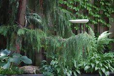ikea birdbath Modern Bird Baths, Ikea Candle Holder, Candle Tray, Ikea Candles, Mosaic Birdbath, Birdbath Diy, Best Garden Tools, Gardening Gloves, Gardening Tools