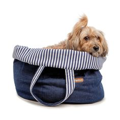 28 Exceptional Dog Bed Jumbo Memory Foam Dog Beds That Are Chew Proof Dog Tote Bag, Dog Backpack, Dog Cafe, What Dogs, Pet Fashion, Dog Travel, Dog Carrier, Dog Leash, Dog Owners