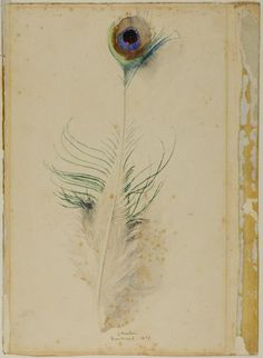 John Ruskin,Peacock Feather,1877. Watercolour over traces of graphite. Not technically a drawing but I'd like to include it here. http://www.cavetocanvas.com/post/52900592668/john-ruskin-peacock-feather-1877