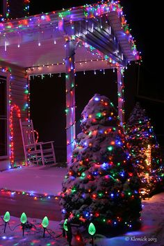 Image may contain: christmas tree and night Christmas Tree Outside, Christmas Scenery, Christmas Mood, Christmas Pictures, Merry Christmas, Christmas Ideas, Holiday Pics, Christmas Displays, Christmas Crack