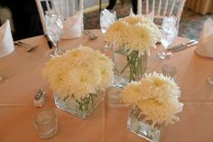 DIY Chrysanthemum Centerpieces...good for church?  Could add in color.