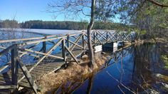 Liesjärvi Outdoor Adventures, Finland, Nature, Naturaleza, Nature Illustration, Off Grid, Natural