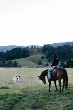 A white farmhouse in the Sunshine Coast hinterland Chickens Backyard, Backyard Chicken Coops, Country Farm, Country Girls, Farm With Animals, Australian Farm, Future Farms, Country Lifestyle, White Farmhouse