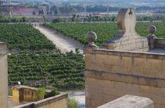 La cantina Antinori e la Cisk birra galante di Malta