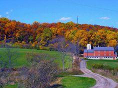 NJ fall farm