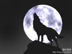 又到十五時...來人阿...關門放...狼...