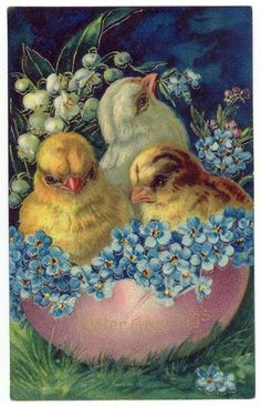 Vintage Easter Greetings PC, Chicks with Blue Flowers for reception Vintage Greeting Cards, Vintage Postcards, Easter Pictures, Easter Parade, Easter Art, Easter Printables, Easter Celebration, Easter Holidays, Vintage Easter
