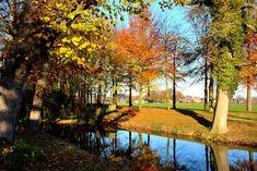 Herfst Kleuren  (Van vroegevogels) Fall Photos, Van, Autumn, Autumn Photos, Fall Season Pictures, Fall Season, Fall, Vans, Autumn Photography