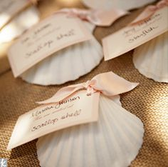 sea shell escort cards