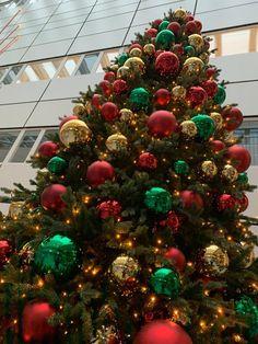 Voordat de kerstbal geïntroduceerd werd, werden papieren slingers, appels en figuurtjes in de boom gehangen. Tegenwoordig zijn kerstballen niet meer weg te denken uit de kerstsfeer!   Bij ambius hebben wij keuze uit maar liefst 12 verschillende kleurpakketten. Welk kleurpakket past het beste bij uw bedrijf?   #kerst #ambius #kerstballen #kerstdecoraties #kerstbeleving #kerstopkantoor