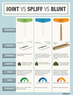 For those who are not familiar with some of the commonly used weed terminologies, here you'll understand the difference between a joint, spliff, and blunt. Weed Facts, Medical Benefits Of Cannabis, Medical Marijuana, Rauch Fotografie, Chihiro Y Haku, Stoner Girl, Herbs, Smoking Weed, Smoke Weed