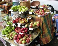 The Art and Science of Farmers' Market Display - eXtension