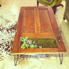 Plant Your Furniture! • Tons of Ideas & Tutorials! Including this planter table from a repurposed old door and cool hairpin legs!