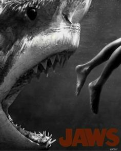 Special Poster of Jaws Jaws Movie Poster, Horror Movie Posters, Horror Films, Jaws Film, Jaws 2, Megalodon, Mises En Page Design Graphique, Shark Pictures, Shark Photos
