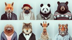Animals Wearing Clothes
