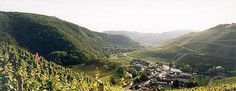Bad Neuenahr, Ahrweiler, Germany. Spent about a week there, at a Supernatural convention (geek, I know). Beautiful place!