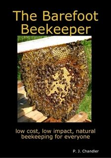 :: really intriguing method of natural beekeeping : using top bar hives
