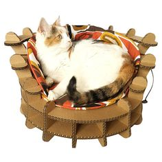 Colliseum Cat Bed Unique Cat Furniture Cat Toy Unique Cat