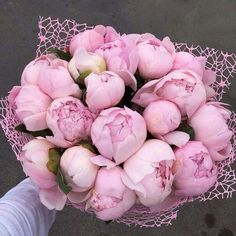 A bouquet of pretty pink peonies