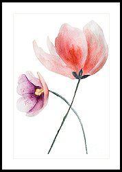 Two Beautiful Flowers Framed Print by Regina Jershova