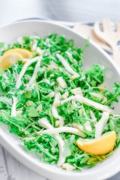 Lemon Arugula Fennel Salad | No Cooking Required Family Recipes