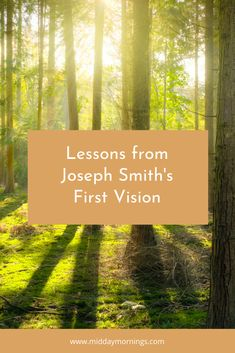 Joseph Smith's First Vision reveals to us sacred truths about God and revelation. Here are additional insights gained from that experience. Joseph Smith History, Sacred Groves, Michael Ealy, Church History, Book Of Mormon, Holy Ghost, General Conference, Latter Day Saints, The Covenant