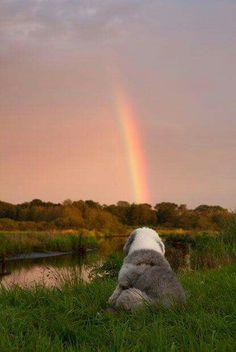 Tu possiedi il giorno,  fallo bello. Prendi i colori  del tuo arcobaleno e sarà bello.  Nootkan