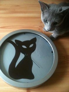 Clock with a cat-handmade;)