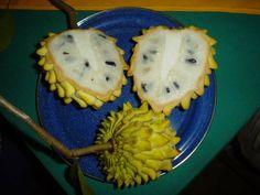 Super ripe Biriba fruit, an orgasmic Amazonian treat!