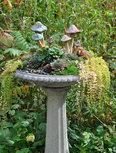 plantas Three Dogs in a Garden: The Holdouts Kids Internet Safety and MySpace - Be Careful! Bird Bath Planter, Bird Bath Garden, Moon Garden, Garden Planters, Succulents Garden, Planting Flowers, Container Flowers, Container Plants, Container Gardening