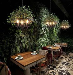 Emory – Vintage Industrial Bird Cage Hanging Lamp – Pets and Supplies Bird Cage, Hanging Lights, Hanging Lamps, Restaurant Design, Modern Lighting, Luxury Lighting, Home Decor, Painted Metal, Garden Wedding