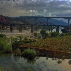 Good morning Douro || Vila Galé Douro  #douro #regua #lamego #vilagale #igersoftheday #picoftheday #travelphotography #ricaviagem #viagens #viajecomigo #landscapephotography #landscape_captures #landscape #ilovedouro #portugalalive #PortugalOnTheRise #portugalalive #p3top #fotododia #instago #portugaldenorteasul #viajantes #ig_today  #amar_portugal by instarickygram