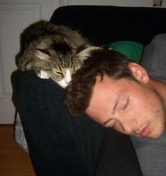 Image shared by Fotos Editadas. Find images and videos about glee, lea michele and cory monteith on We Heart It - the app to get lost in what you love. Glee Rachel And Finn, Finn Glee, Lea And Cory, Cory Glee, Celebrities With Cats, Celebs, Men With Cats, Glee Cory Monteith, Netflix