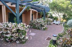 Pestana Village Hotel Garden Resort - Flip - Picasa Webalbums