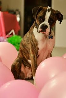 Yes I know...I'm surrounded by pink balloons!!