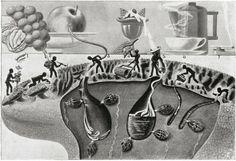 Fritz Kahn - How dessert cleans the tongue (1943)