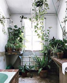 "morning views ☀️#dreambathroom #plantlove #relax : @bobbyandtide"""