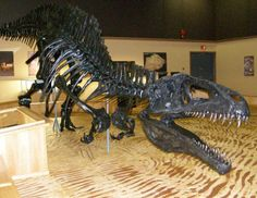 walking withthe dinosaurs | Walking With The Dinosaurs in The Peace River Country | Flickr - Photo ...