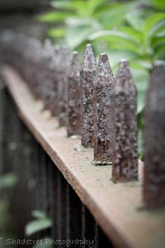 Rustic Iron Fence