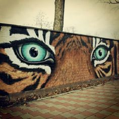 Stefan Vogt. #tiger #graffiti #painting