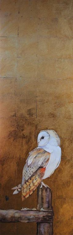 'Barn Owl Left' by Jackie Morris