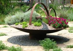 Metal saucer planted with xeric groundcovers -- what a focal point