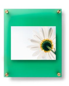 12x10 Emerald Frost Double Panel Floating Frame For 5x7 Photos 1210dr L124