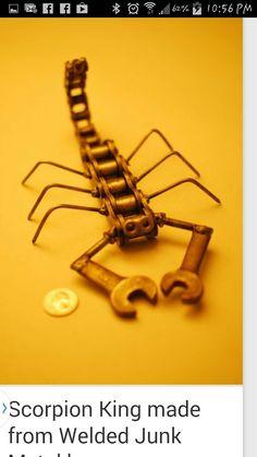 Chainscorpion