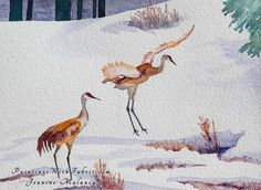 Sandhill Cranes at Yellowstone    Unframed Original Watercolor Painting Two sandhill cranes at Yellowstone park in the early spring