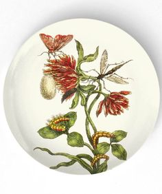 1600's botanical artwork VI  reproduced on 10 by TheMadPlatters, $18.00