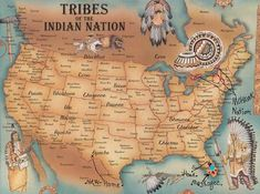 Situated mostly in the Northwest United States and in Canada after migrating from the Great Lakes region the Blackfoot Indians have a rich history and cultureBlackfoot In. Blackfoot Indian, Indian Tribes, Native Indian, Native American Map, Native American Genocide, American Indian Quotes, American Dad, American Women, Sioux