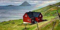 Dinamarca – o primeiro país que, por lei, só terá agricultura orgânica